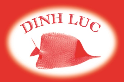 logo DinhLuc